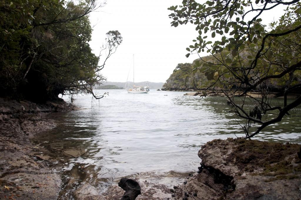 Evening Cove